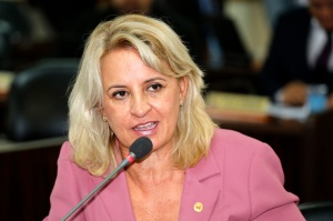 A vereadora Noemia Rocha relembrou lei de sua autoria que não atingiu completamente seu objetivo. (Foto – Anderson Tozato/CMC)