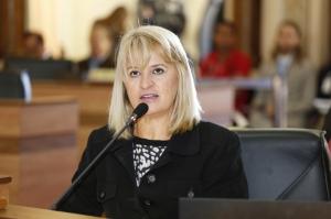 Noemia Rocha, presidente da Comissão. (Andressa Katriny/CMC)