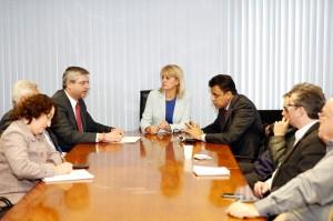 Comissão de Saúde destacou Noemia Rocha para acompanhar a apuração preliminar e participar das reuniões. (Foto: Chico Camargo/CMC)